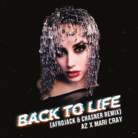 Back to life (remix)
