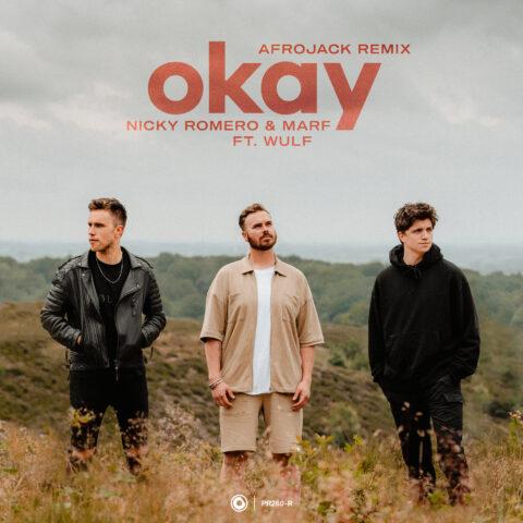 Okay (remix)